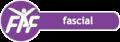 Koulutus: Fysioline academy of Finland